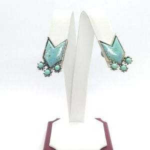 Vintage Screwback Earrings Turquoise Plastic Arrow